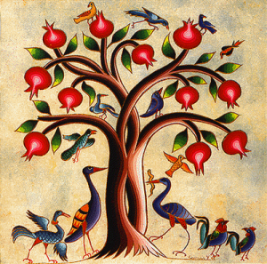 pomegranate tree, from a medieval Armenian medical manuscript